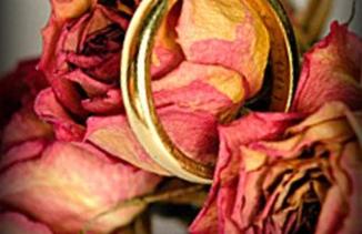 Rosa y anillo